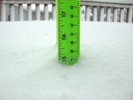 snowday4.jpg