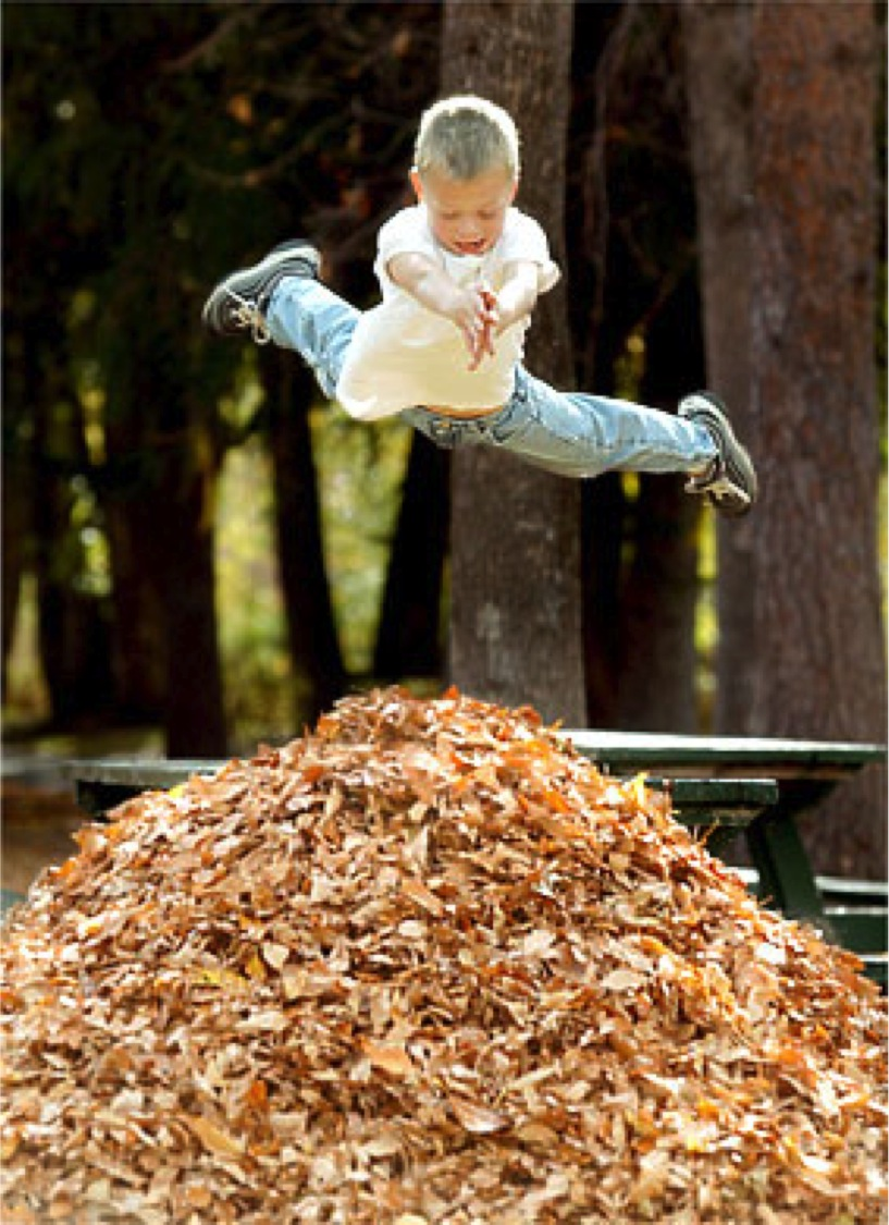 Kid-jumping-leaves