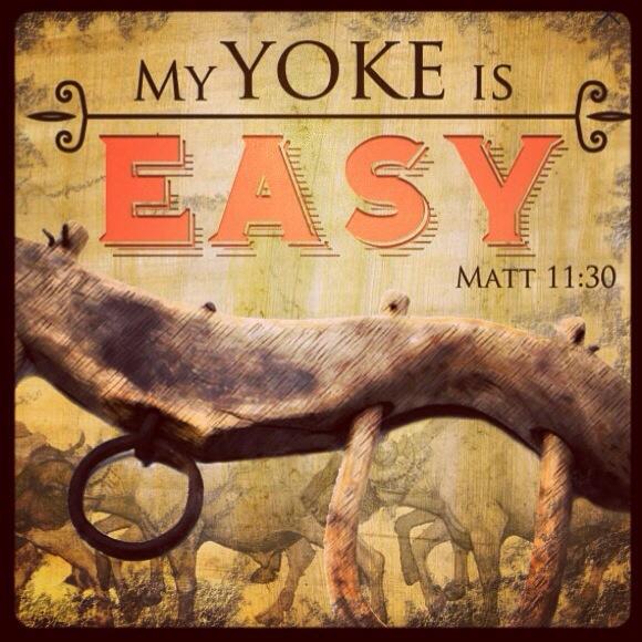 easyyoke