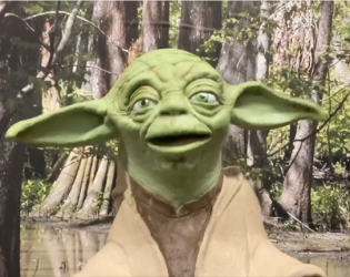 """There is NO """"Baby Yoda"""""""